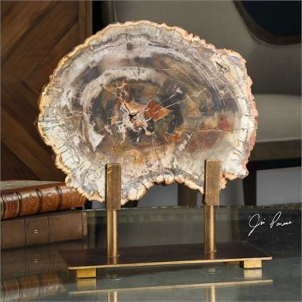 Picture of PETRIFIED WOOD